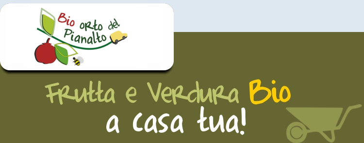 Testata_newsletter